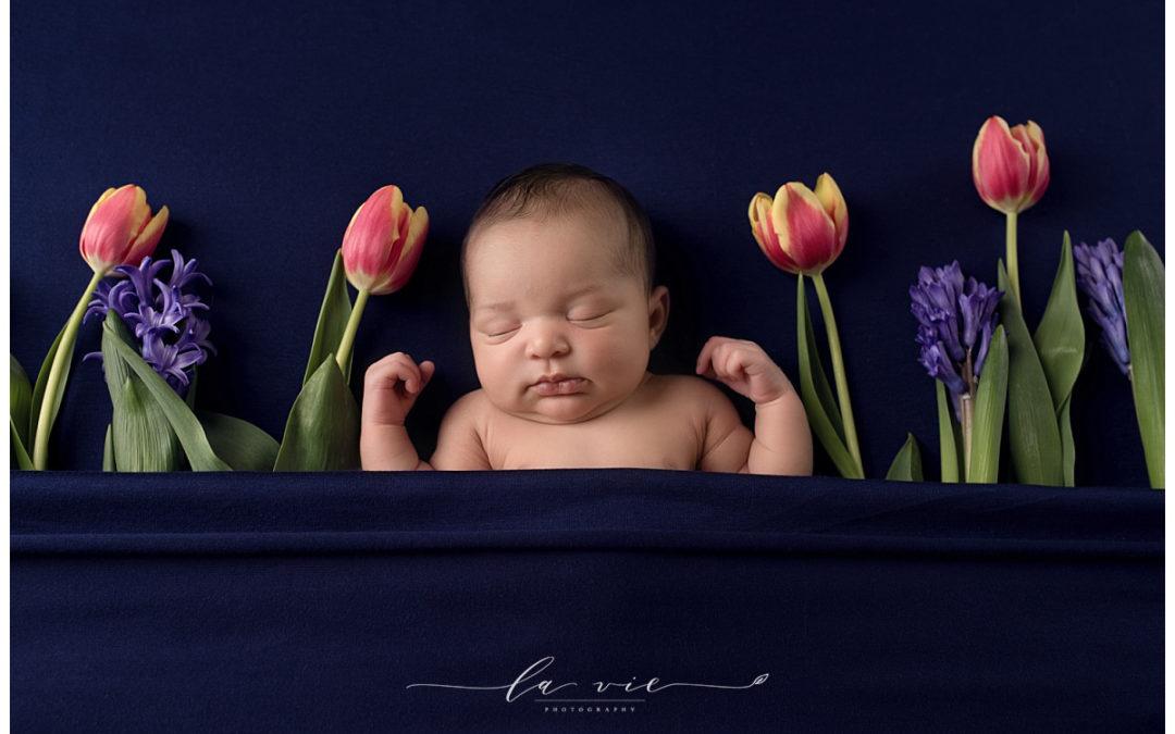 Houston Newborn Luxury Photographer   Londyn